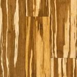 Stranded Bamboo Flooring